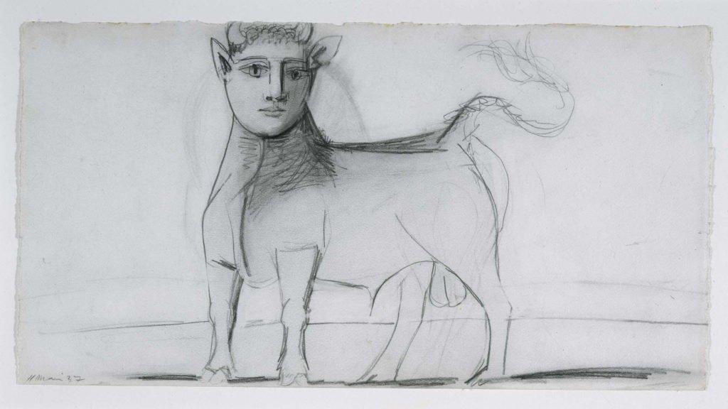 22. Toro con rostro humano. 11 de mayo de 1937. 239×455 mm. Grafito sobre papel blanco.