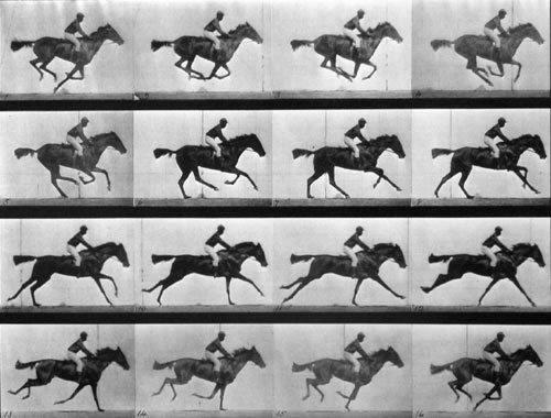 En el década de 1890 Muybridge recorrió eventos científicos y ferias mostrando secuencias fotográficas que sugerían la sensación de movimiento, mediante un dispositivo que él mismo diseño: el zoopraxiscópio.